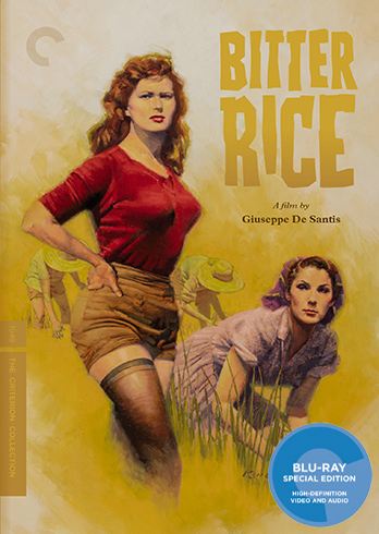 Bitter Rice, Criterion Collection, Bitter Rice Review, Bitter Rice Blu-ray Review