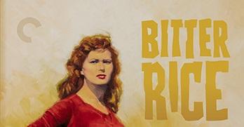 bitter-rice