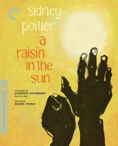 raisin in the sun cover